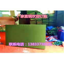 压缩体操垫、体操垫、鑫欧泰教学设备(查看)图片
