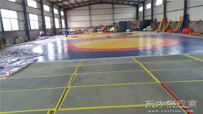 柔道垫_鑫欧泰教学设备制造_武校专用柔道垫图片