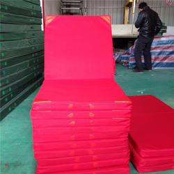河北鑫欧泰教学设备,体操垫子,体操垫子生产厂家图片