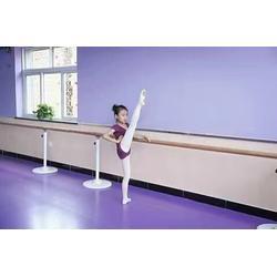 鑫欧泰教学设备(图) 舞蹈把杆 舞蹈把杆图片