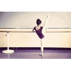 鑫欧泰教学设备,宁德舞蹈把杆,固定式舞蹈把杆图片