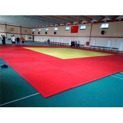 训练柔道垫子报价、柔道垫、河北鑫欧泰教学设备图片