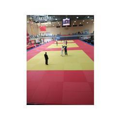 柔道垫,标准比赛柔道垫,鑫欧泰教学设备图片