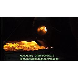 生物质燃气锅炉-四川生物质燃气-鑫林源环保节能高效(查看)图片