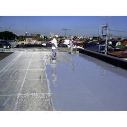专业防水补漏 楼顶防水 屋面防水 阳台防水等工程图片