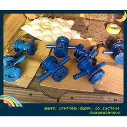 DN65螺纹水流指示器|水流指示器|直通叶轮视镜(图)图片