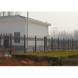 不锈钢护栏、华强铁艺护栏、舞钢护栏图片