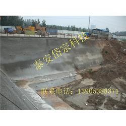 岱宗科技(图)_电厂基坑锚索支护方案_锚索图片