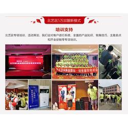 实木家具免费加盟|北艺居(在线咨询)|北京实木家具