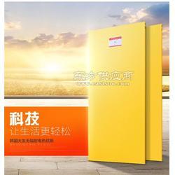 韩国电热板/大友电热板/碳晶电热膜市场价图片