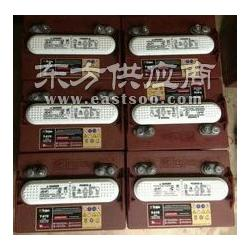 美国邱健蓄电池T-875赣州现货齐全图片