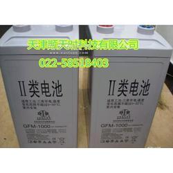美国Trojan邱健蓄电池12VL16P图片
