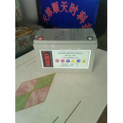 霍克叉车蓄电池5PZB500原装正品含税销售图片