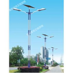 别墅太阳能庭院灯,福州庭院灯,亚黎LED路灯半价图片