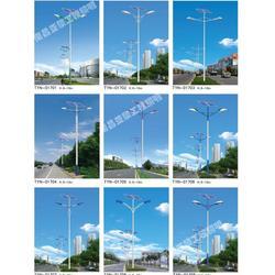 工厂草坪灯|亚黎LED路灯超低价|草坪灯图片