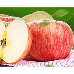 红富士苹果_山西红富士苹果基地_红富士苹果图片