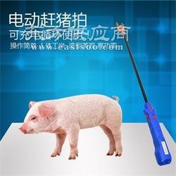 赶猪神器 兴远渔具供 电动赶猪鞭图片