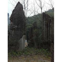 景观石哪家好-景观石-磊泰实业-承接施工图片