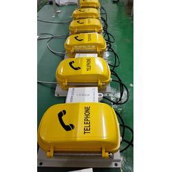 特种防水防潮防尘电话机 防水防尘电话机图片