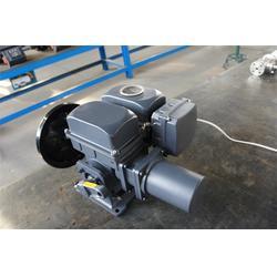 伯纳德电动执行器选型,伯纳德电动执行器,迈捷孚自控设备图片