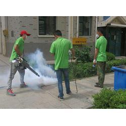 福州小区灭红火蚁收费|福州清道夫环保公司|福州小区灭红火蚁图片