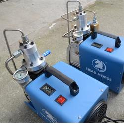 电动高压打气机厂、电动高压打气机、先马机电厂货直供(查看)图片