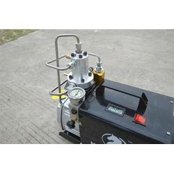 先马机电质量保障 30mpa高压打气机厂图片
