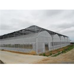 福州温室大棚冷库|钢结构大棚设计|永泰钢结构大棚图片