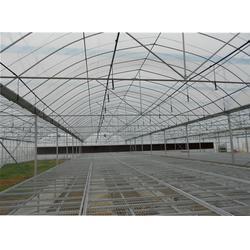 福州元凯温室大棚,福州蔬菜大棚,大棚图片