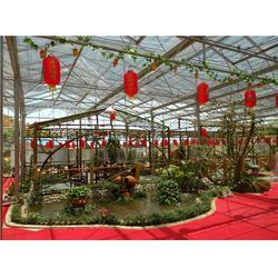 福州大棚建设,大棚,福州元凯温室大棚图片