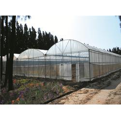 农业大棚搭建-福清农业大棚-福州元凯温室大棚图片