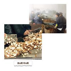 古法酿造白酒代理,三门峡白酒代理,野王怀(查看)图片