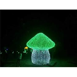 河南装饰灯设计安装、防水装饰灯设计安装、伟兰照明(优质商家)图片