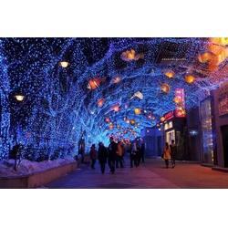 街道节日彩灯-伟兰照明(在线咨询)山东节日彩灯图片