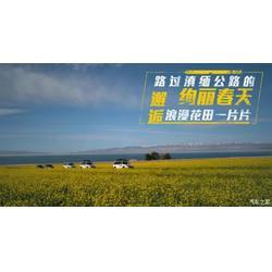 江蘇獵豹汽車-南京進源潤汽車服務-獵豹汽車專賣店圖片