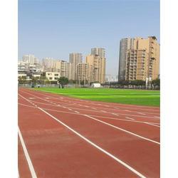 塑胶跑道多少钱一平方-立新体育(在线咨询)天津塑胶跑道图片