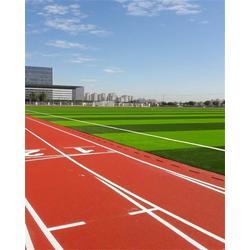 张家口塑胶跑道,立新体育设施工程,塑胶跑道翻新图片