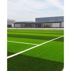 天津塑胶跑道施工 天津市立新体育设施