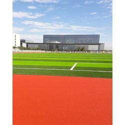 天津塑胶跑道施工 立新体育