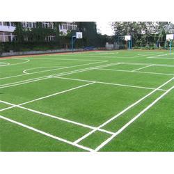 天津市立新体育设施(图)-幼儿园人造草坪-天津人造草坪图片