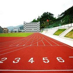 天津塑胶跑道工程-立新体育(在线咨询)天津塑胶跑道