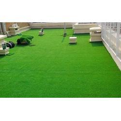 天津人造草坪-立新体育设施工程-天津人造草坪建设图片