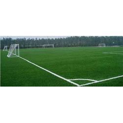 天津人造草坪每平方多少钱-天津人造草坪-天津市立新体育图片