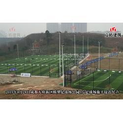 学校足球场人造草铺设单丝人造草休闲健身区域景观草足球俱乐部足球公园人造草施工无毒环保材料图片