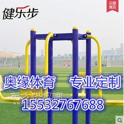 永德县老人室外健身器材双人儿童秋千图片