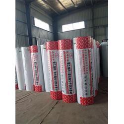 防水卷材工程-青山防水卷材- 湖北荆狮防水图片