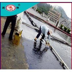 人防防水堵漏、硚口防水堵漏、荆狮防水(查看)图片