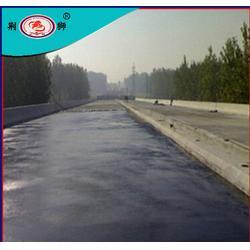 专业防水堵漏工程公司- 湖北荆狮防水-武汉防水堵漏图片