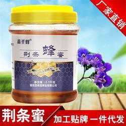 西藏椴树蜜|襄阳圣蜂堂蜂业|椴树蜜图片