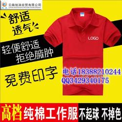 广告衫印制 定制广告帽 文化衫印LOGO 螺蛳湾恤广告衫订做图片